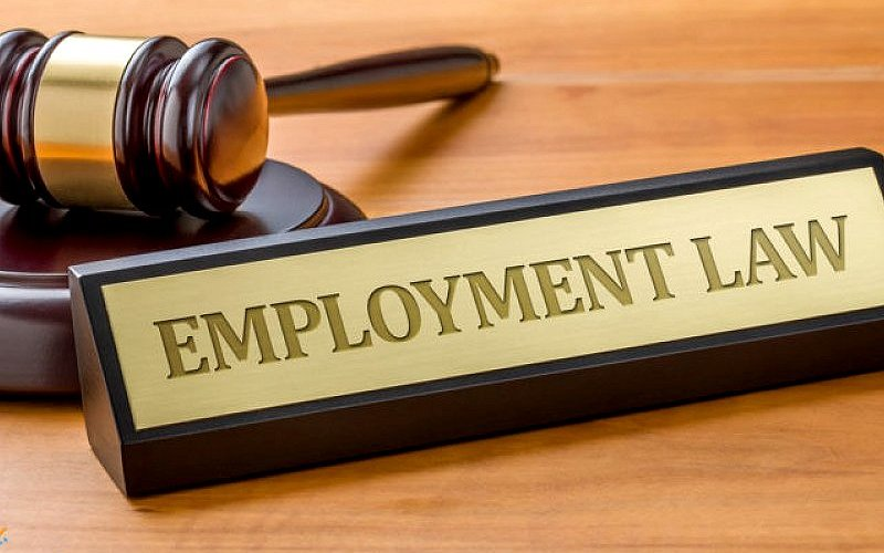 Comprehensive Understanding of The Employment Act and Its Practical Applications